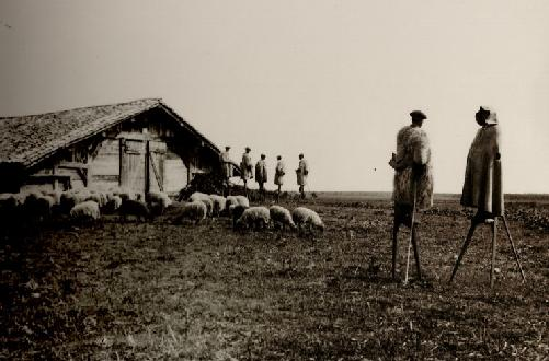 the last people on stilts at the beginning of the XXth century